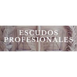 4 - Escudos Profesionales